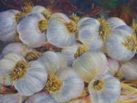 "At The Garlic Festival - From the ""On The Farm"" Book"