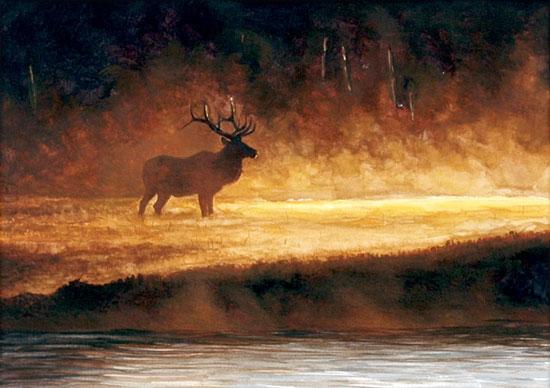 Fine Art Oil Paintings Fine Art Artist Adriano Manocchia
